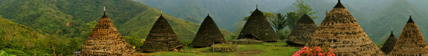 Wae Rebo Trekking and Turtle camp